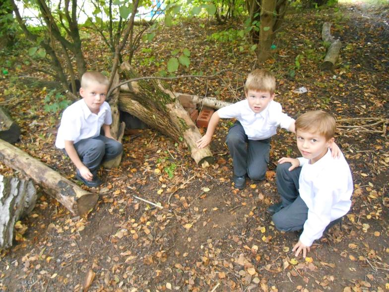 The boys' finished hedgehog's house.