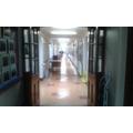 Year 5/6 Corridor