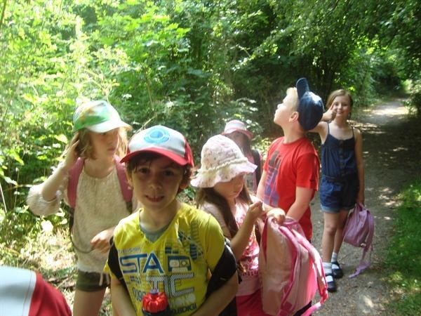 our nature walk