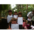 The children working on their fact sheets