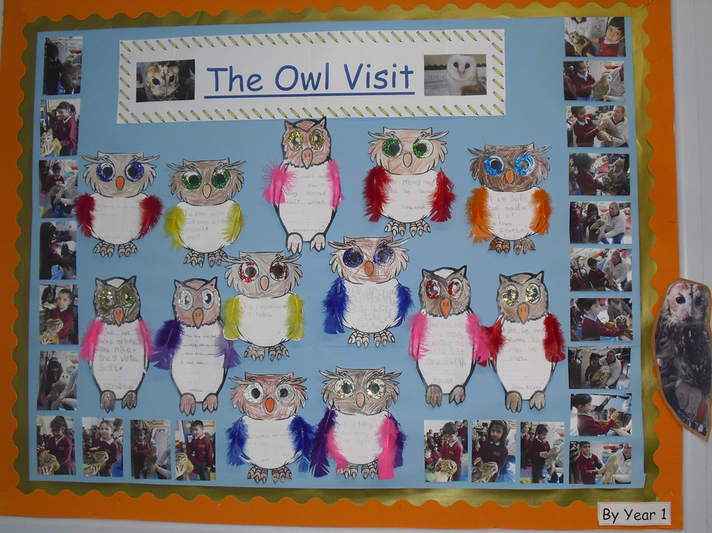 Year 1 - Our owl Visit