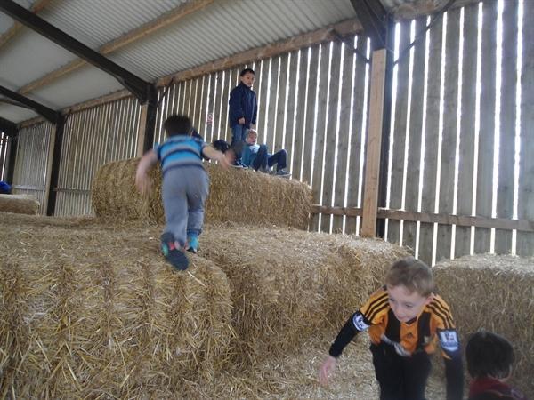 Playdale Farm 2014