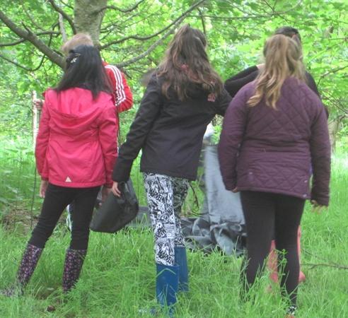 Elterwater Tree Whisperers (Jun 14)