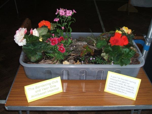 KS1's Gardening Club - Minibeast Garden