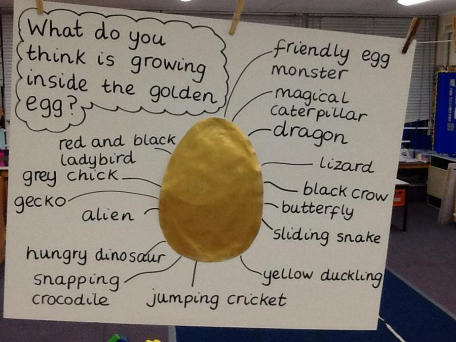 Our ideas about what is in the egg