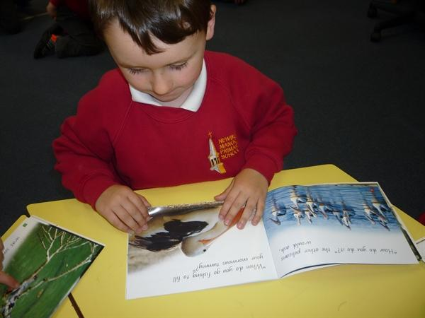 Information books about Australian creatures