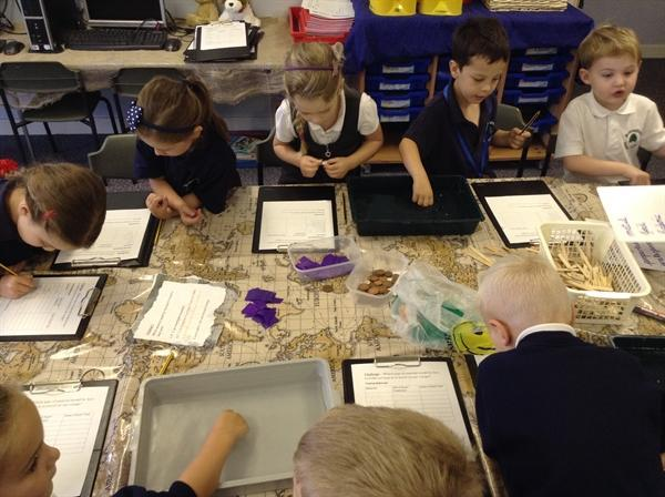 Investigating buoyancy