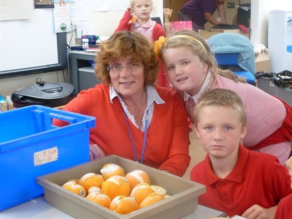 preparing the oranges
