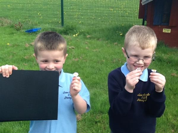 We recorded what we found on our clipboards!