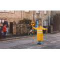 School Crossing Patrol, 2002