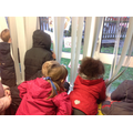 We loved watching the snow fall!