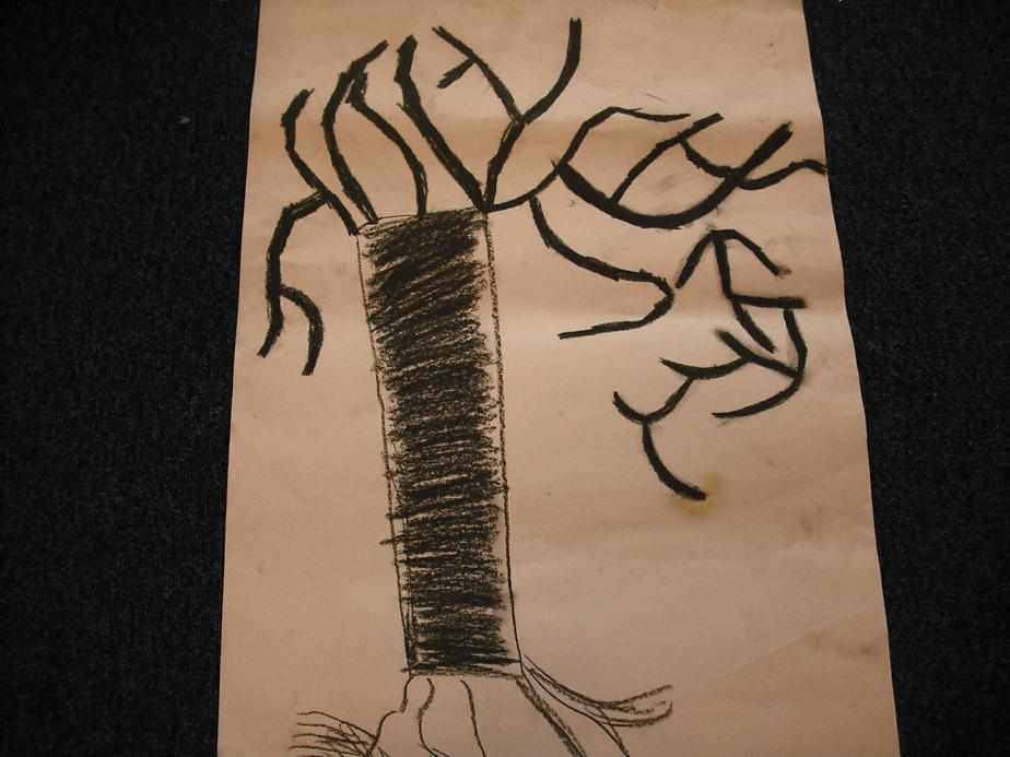 A japanese tree