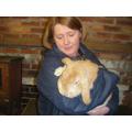 Alfie the rabbit