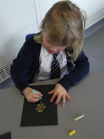 We did observational drawing.
