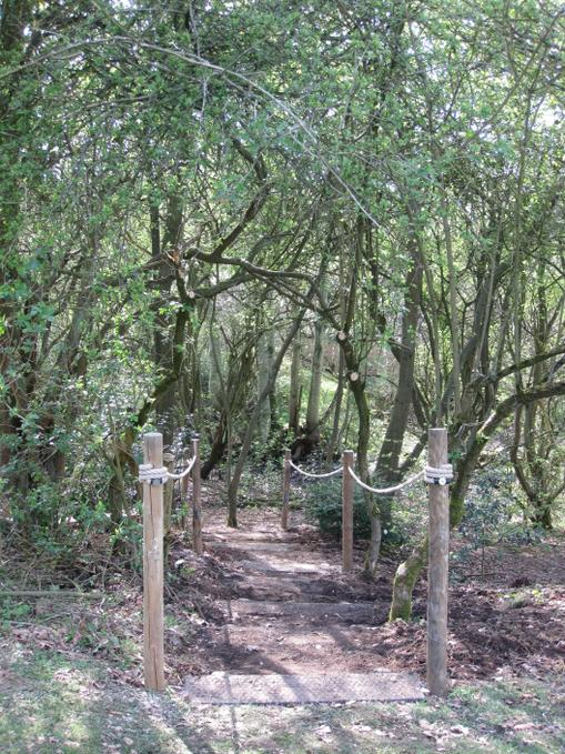 The path down to the Woodland Theatre