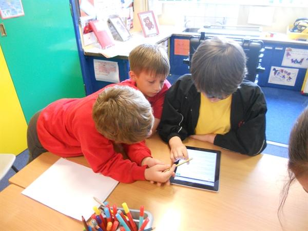 Working together with Y5 and Y6