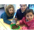 South Devon Chilli Farm gave us some chilli seeds