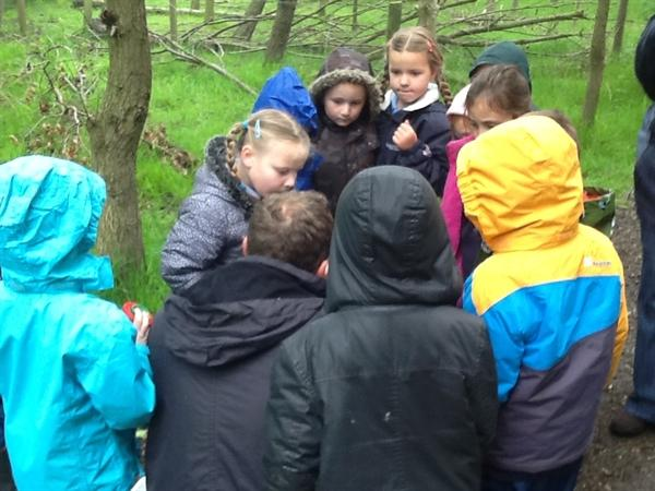 We all had a look at what one another had found!