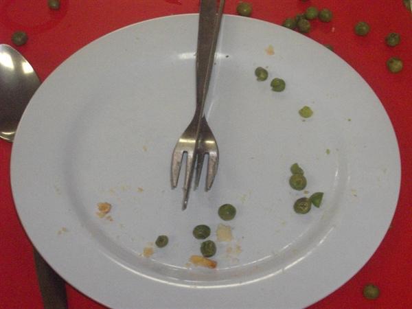 New school dinners