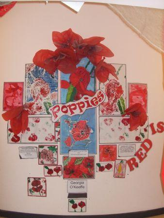 Poppies Display