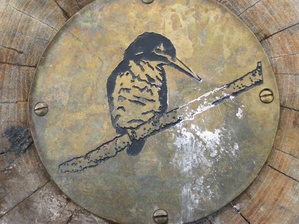 Kingfisher Brass