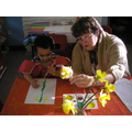 Nursery painted Daffodils for St Davids Day
