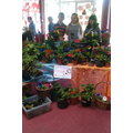 Our summer fair plant stall