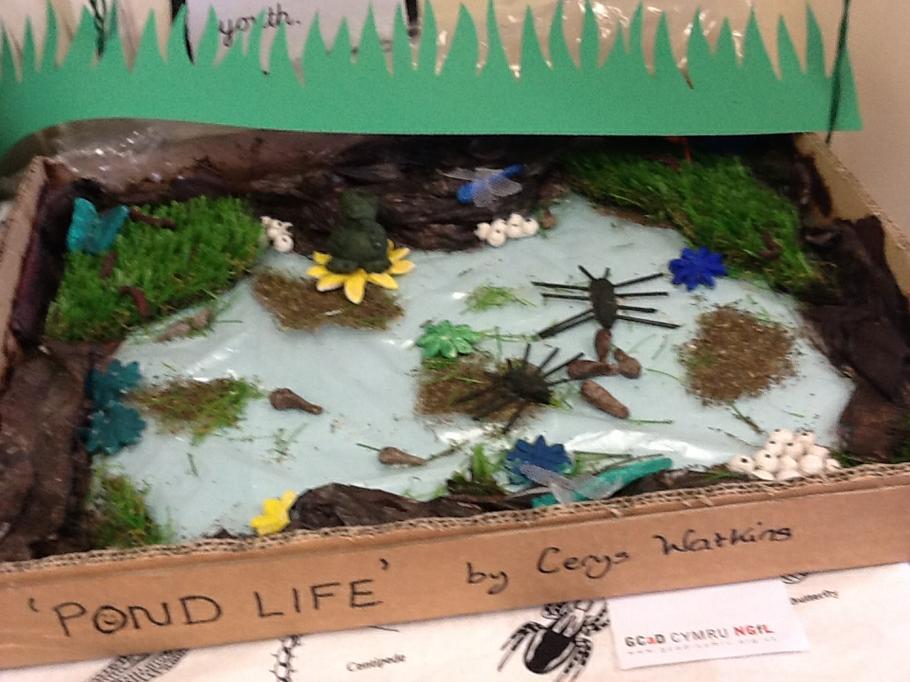 Creu byd bach gwyrdd / Creating a green world