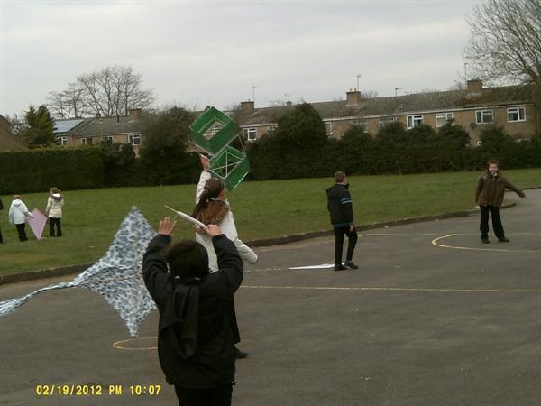 Peacocks Flying their kites