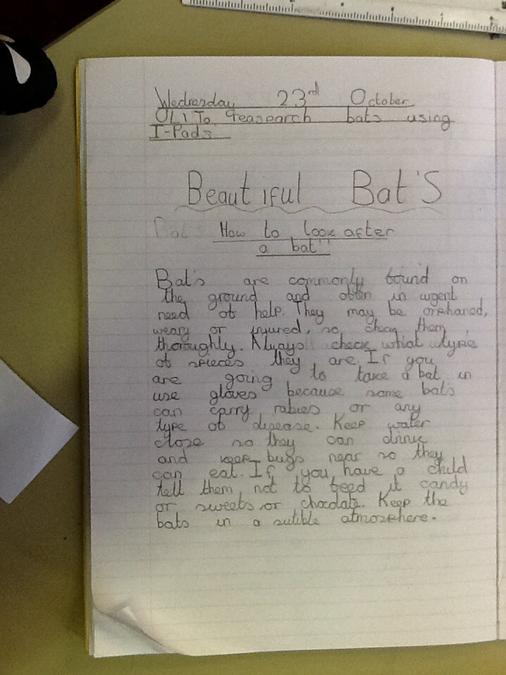 Emily's fantastic facts!