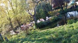 London Zoo 12