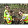 Gardening Club plant trees