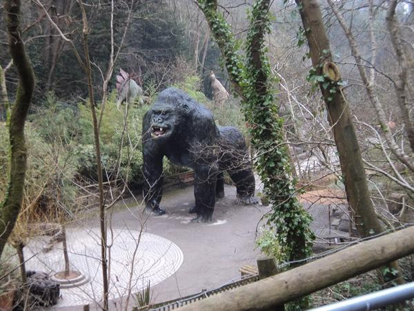 Wookie Hole wildlife!