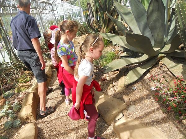 Maths fun at the Botanic Gardens