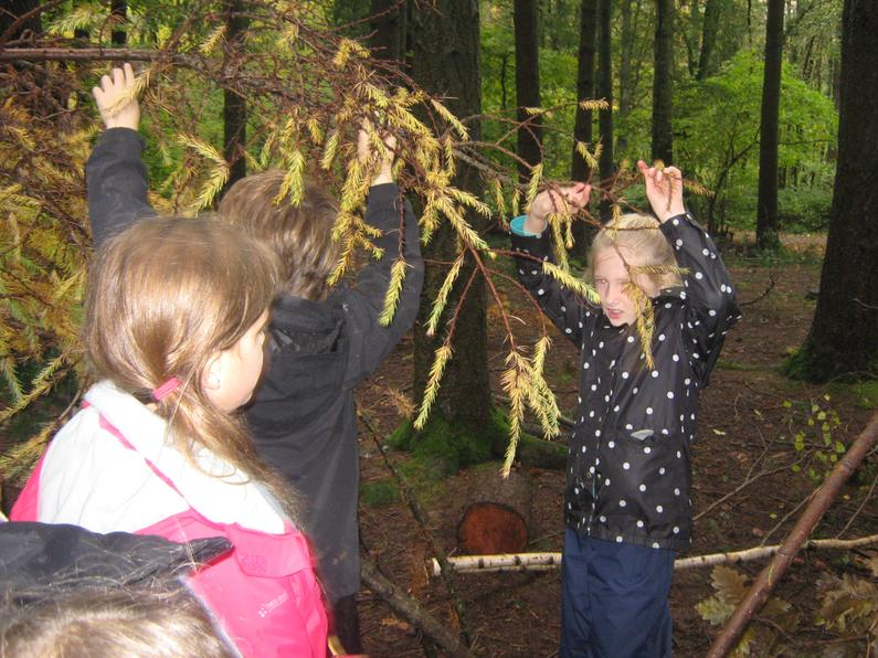 We worked in a team to build our den.