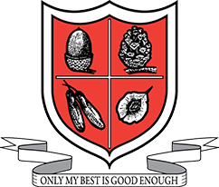 Blackpool School Logo