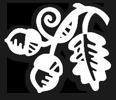 Meavy CofE Primary School logo