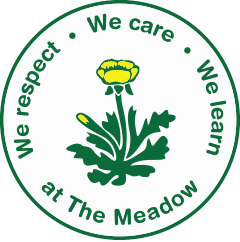 The Meadow Primary School